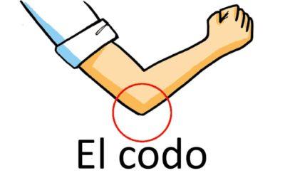 Употребление слова «codo» (локоть) в испанском языке